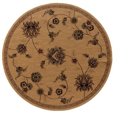 Currahee Beige/Gray Area Rug Rug Size: Round 710