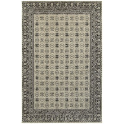 Cynthiana Ivory/Gray Area Rug Rug Size: Rectangle 53 x 76
