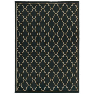 Delshire Lattice Navy/Light Grey Area Rug Rug Size: 53 x 73