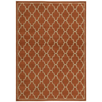 Delshire Lattice Orange Area Rug Rug Size: 53 x 73