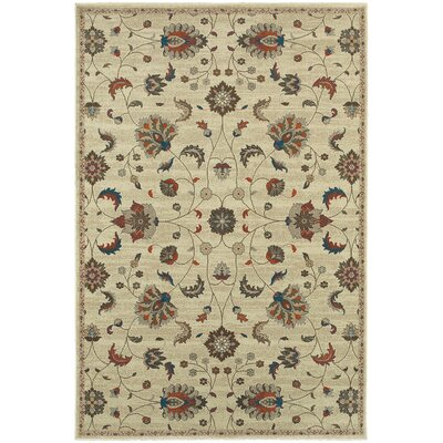 Derrymore Beige/Brown Area Rug Rug Size: 53 x 76