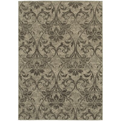 Derby Gray/Ivory Area Rug Rug Size: 910 x 1210