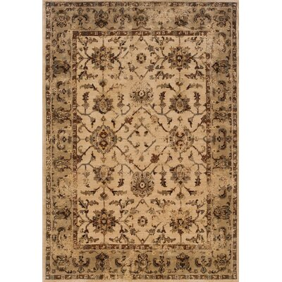 Dewolf Ivory/Beige Area Rug Rug Size: Rectangle 53 x 76