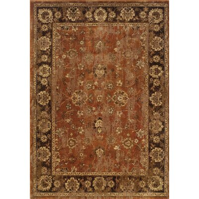 Dewolf Oriental Orange/Brown Area Rug Rug Size: 53 x 76