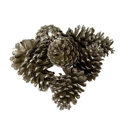Charlton Home Snowdrift Large Pinecones (Set of 36)