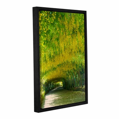 Green Path Framed Photographic Print Size: 12