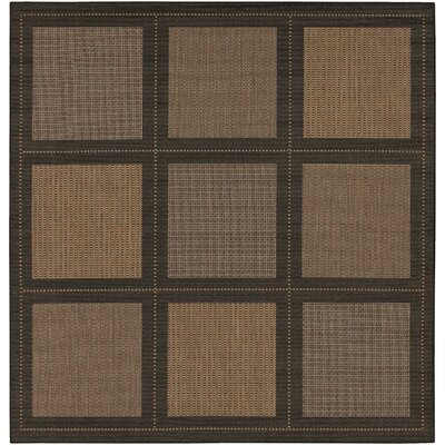 Westlund Cocoa Indoor/Outdoor Area Rug Rug Size: Square 76