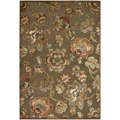 Daugherty Quartz Retro Poppy Rug Rug Size: 53 x 76