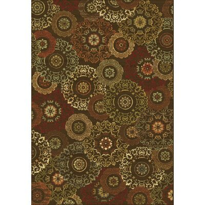 Bluff Canyon Brown Suzani Area Rug Rug Size: 53 x 77
