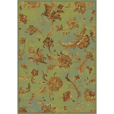 Bluff Canyon Aqua Aegean Scroll Area Rug Rug Size: 33 x 47
