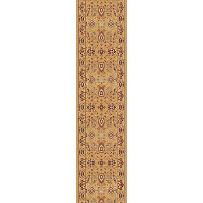 Mishawaka Berber/Red Area Rug Rug Size: Runner 2 x 77