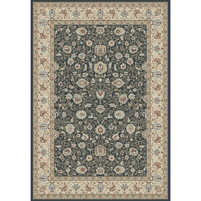 Morocco Anthracite Area Rug Rug Size: 710 x 1010