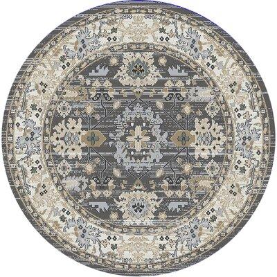 Mishawaka Beige/Gray Area Rug Rug Size: Round 53
