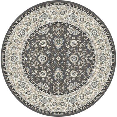 Mishawaka Gray/Beige Area Rug Rug Size: Round 53