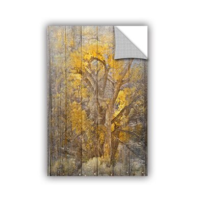 Redkey Autumn Tree Wall Mural Size: 12