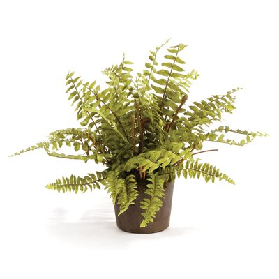 Boston Fern Drop-In Faux Plant