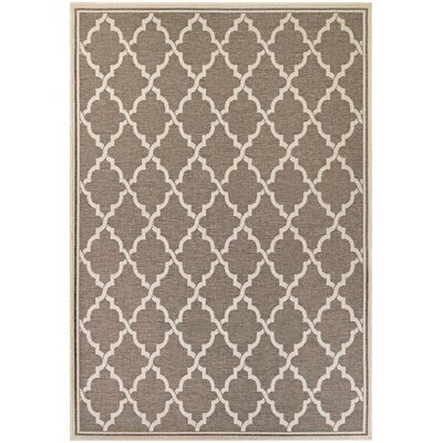 Cardwell Brown Indoor/Outdoor Area Rug Rug Size: Runner 23 x 710