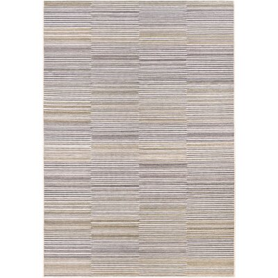 Whitney Indoor/Outdoor Area Rug Rug Size: Rectangle 66 x 96