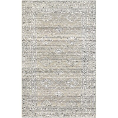Cargile Hand-Knotted Gray Area Rug Rug Size: Rectangle 35 x 55