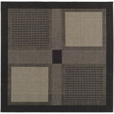 Isaiah Black/Sand Outdoor Rug Rug Size: Square 67