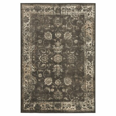 Rindge Soft Anthracite Area Rug Rug Size: Rectangle 12 x 18