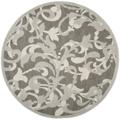 Neil Gray/Light Gray Indoor/Outdoor Area Rug Rug Size: Round 7 x 7