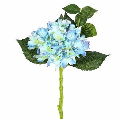Hydrangea Stem Flower Color: Blue
