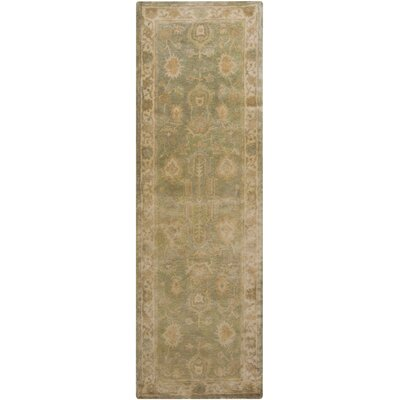 Bogard Sea Foam Area Rug Rug Size: Runner 26 x 8