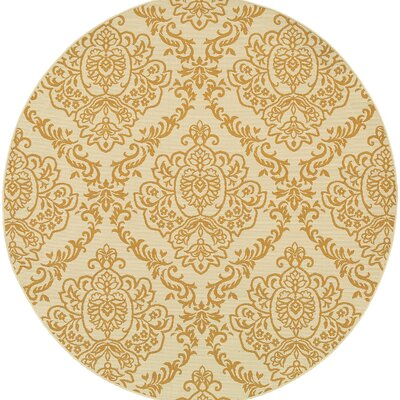 Carriage Hill Hand-Woven Gold Indoor/Outdoor Area Rug Rug Size: Round 7'10