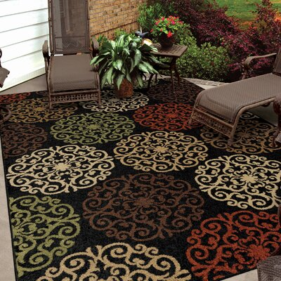 Audane Black Indoor/Outdoor Area Rug