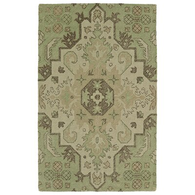 Fairhaven Handmade Green Indoor/Outdoor Area Rug Rug Size: Rectangle 4 x 6
