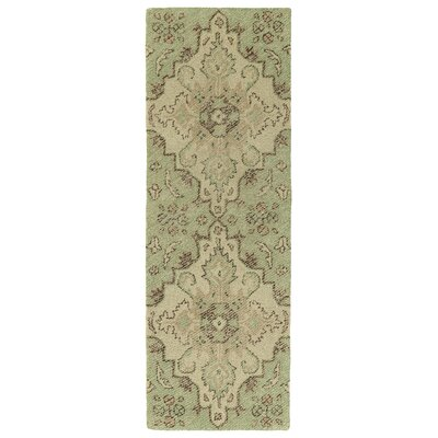 Fairhaven Handmade Green Indoor/Outdoor Area Rug Rug Size: Runner 2 x 6