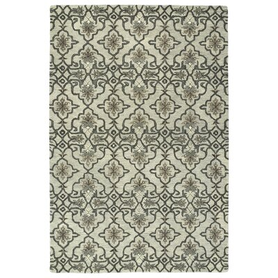 Fischer Hand-Tufted Mint Area Rug Rug Size: Rectangle 9 x 12