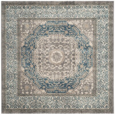 Sofia Light Gray/Blue Area Rug Rug Size: Square 51