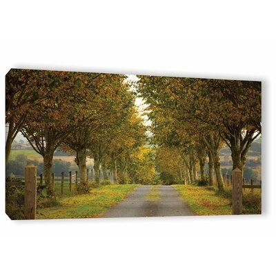 'Colors of Autumn' Photographic Print on Canvas Size: 12