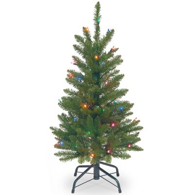 Charlton Home Pencil 3' Green Fir Artificial Christmas Tree with Multi-Colored Lights with Stand