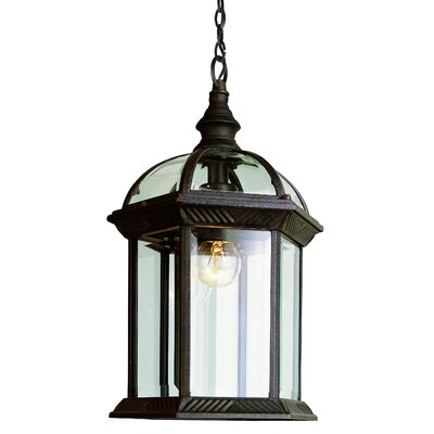 Blue Mountain 1-Light Outdoor Hanging Lantern