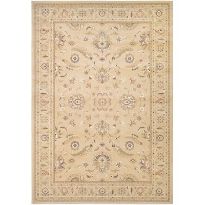 Anheuser Cream Area Rug Rug Size: 311 x 55