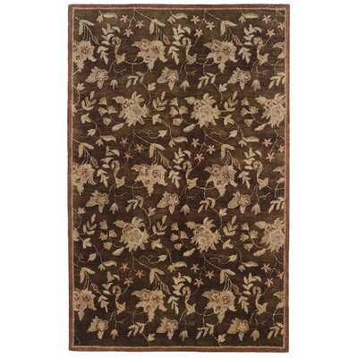 Goodrum Hand-Tufted Brown/Beige Area Rug Rug Size: Rectangle 4 x 6
