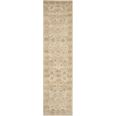 Colesberry Light Gold Area Rug Rug Size: Runner 23 x 9