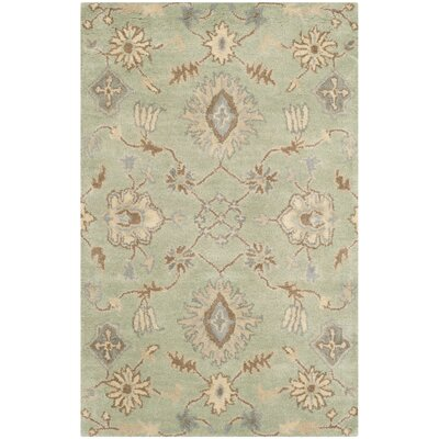 Colesberry Light Green Area Rug Rug Size: Rectangle 5 x 8