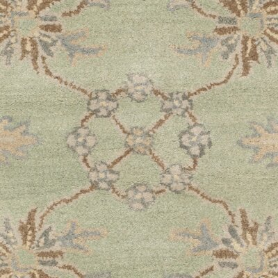 Colesberry Light Green Area Rug Rug Size: 5 x 8