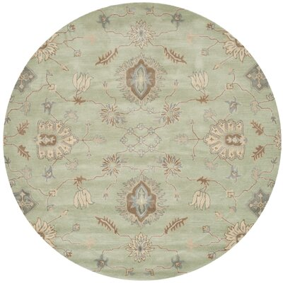 Colesberry Light Green Area Rug Rug Size: Round 7