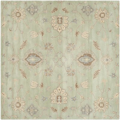 Colesberry Light Green Area Rug Rug Size: Square 7