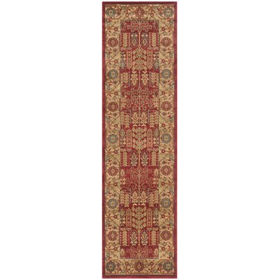 Coleraine Red Area Rug Rug Size: Runner 22 x 16