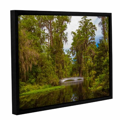 'The Cypress Garden' Framed Photographic Print on Canvas Size: 14