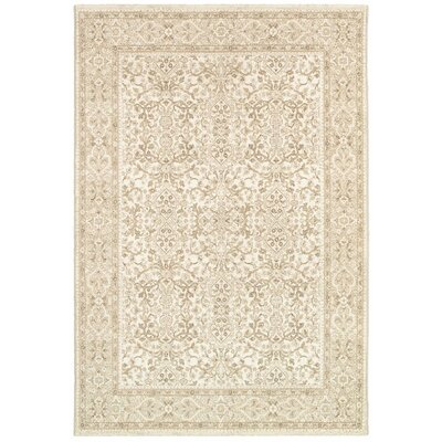 Almira Champagne Area Rug Rug Size: Rectangle 5'3