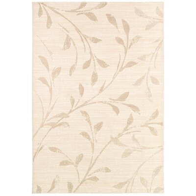 Alamo Rug Rug Size: Rectangle 53 x 76