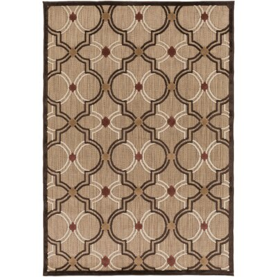 Carver Outdoor Rug Rug Size: Rectangle 3'9