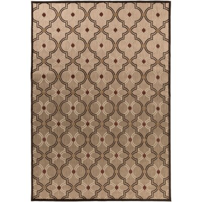 Carver Outdoor Rug Rug Size: Rectangle 7'10